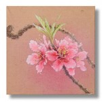 桃の花 日本画 4