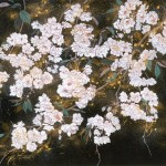さくら 桜 サクラ 日本画 Japanese painting of cherry blossoms