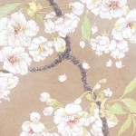 サクラ―ウコン桜 Cherry blossoms (ukon) Japanese‐style painting