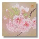 福禄寿(八重桜) Cherry blossoms