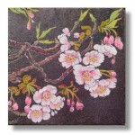 寒桜(かんざくら)日本画3 Cherry blossoms Cherry blossoms-Japanese painting