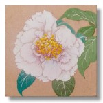 椿(つばき) 日本画 2 Camellias