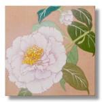 椿(つばき) 日本画 3 Camellias