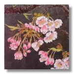 寒桜(かんざくら)日本画4 Cherry blossoms