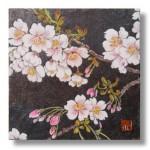寒桜(かんざくら)日本画 1Cherry blossoms
