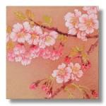 寒桜(かんざくら)日本画6 Cherry blossoms