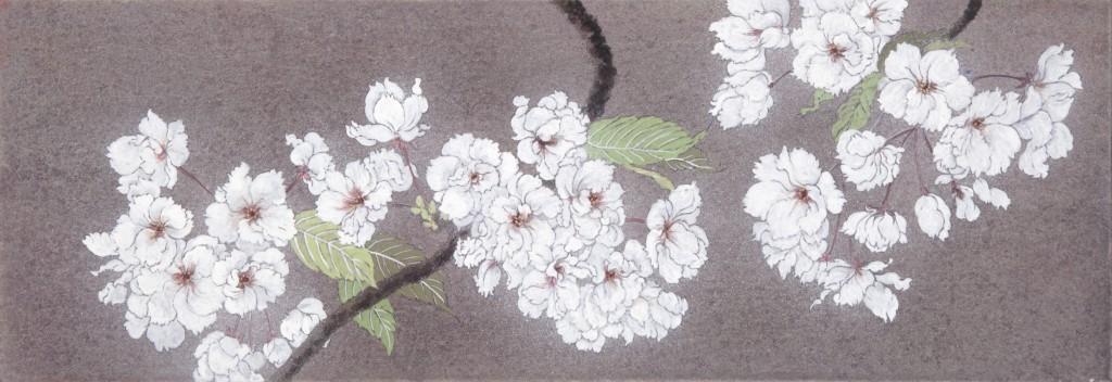桜 WSMサイズ